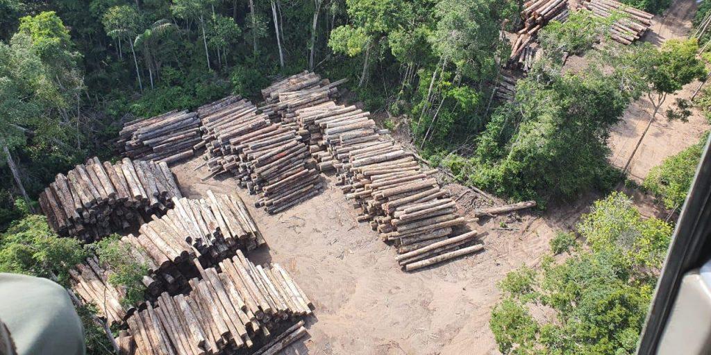 LA AMAZONIA BRASILEN?A